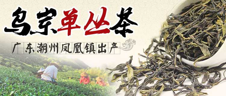 乌岽单丛茶价格及图片表   京东